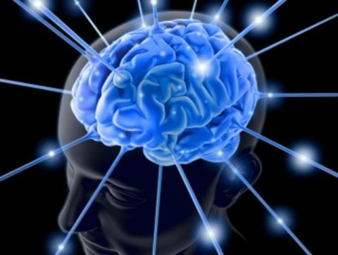 Рекомендации для эффективной работы мозга