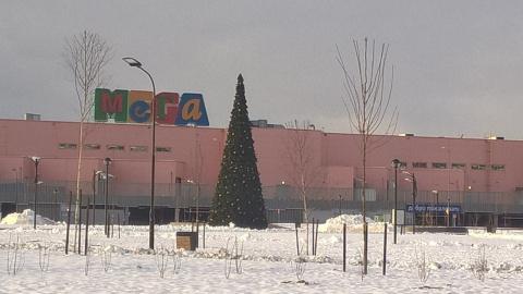 В Петербурге возле торгового…