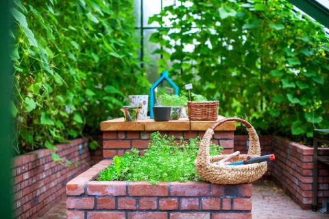 Огород легкого ухода? — Шутить изволите