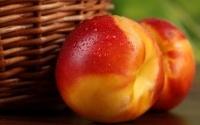 Персиковое масло – средство чудесного преображения