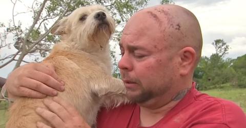 Он думал, что его собаку уне…