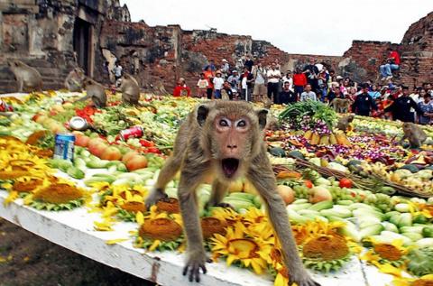 15 странных фестивалей, кото…
