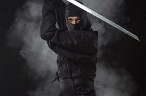 Таинственные воины ниндзя