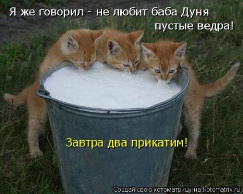 Свежая котоматрица. Всем улы…
