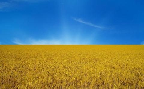 С укросайта: Украина прет вперед как бульдозер!!! (И ведь они сами в это верят!!! )