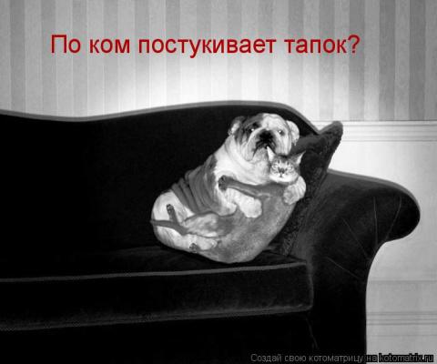 http://mtdata.ru/u16/photo3EC3/20166418360-0/big.jpeg