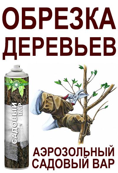 Обрезка деревьев, аэрозольный садовый вар, обрезка вишни, обрезка сливы, обрезка молодых деревьев, обрезка осенью, обрезка весной, весенняя обрезка деревьев, садовый вар спрей, зеленая серия, аэрозоли для лечения растений, побелка садовая аэрозольная