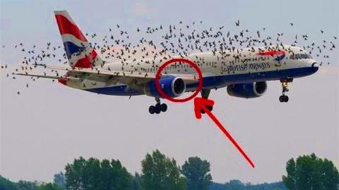 Неудачный взлет самолетов — видео не для слабонервных