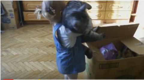 Готовимся к переезду. Дети упаковывают кошку (смешное видео)