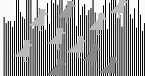 13 крышесносящих оптических иллюзий (2 фото + 3 видео + 10 гиф)