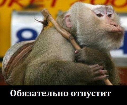 """ФОТО САГА """" НАЧАЛЬНИК ОТПУСТИ ДОМОЙ, СЕГОДНЯ ЖЕ ПЯТНИЦА !!!"""""""