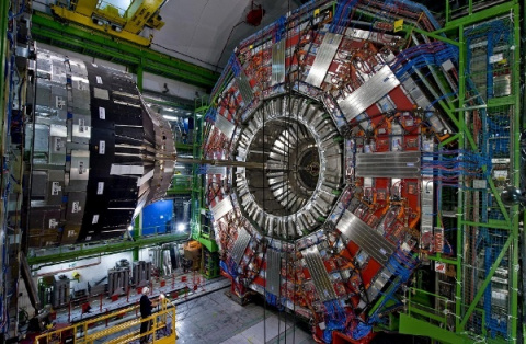 Хорек напару недель остановил работу большого адронного коллайдера