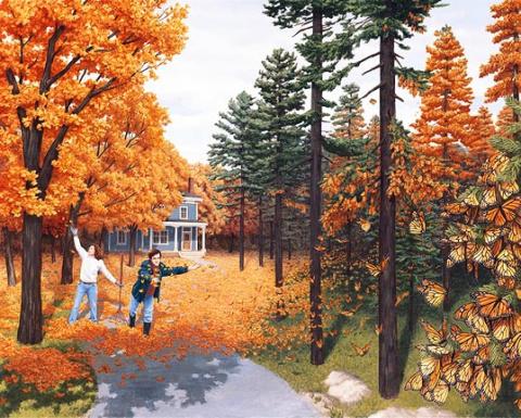 Fall Color Flies