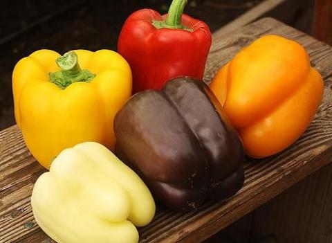 Разноцветные перцы, которые стоит посадить в этом сезоне