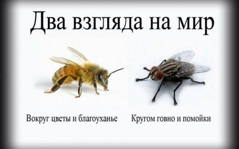 Люди-мухи, и люди-пчёлы...