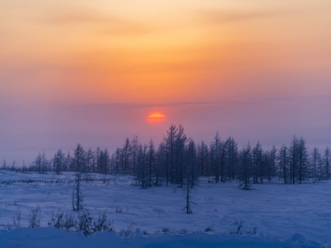Полярная ночь, уходи: жители Таймыра увидели солнце инеповерили глазам