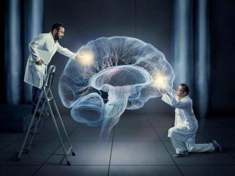 Возможно, наше сознание влия…