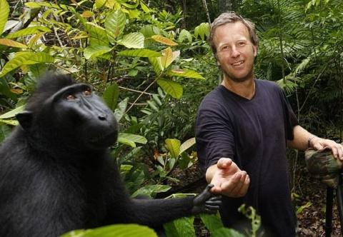 Как обезьянкино селфи сломало жизнь крутому фотографу