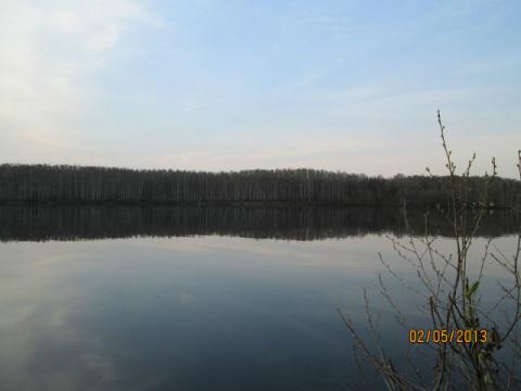 Озеро утром.