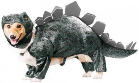 Собачьи костюмы Хэллоуин