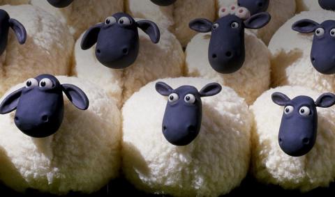 Про червей, овец и людей:  вся правда про отношения