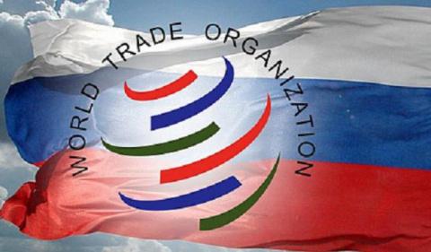 Почему России стоит остаться в ВТО. Александр Роджерс