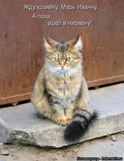 Жду хозяйку, Марь Иванну. А …
