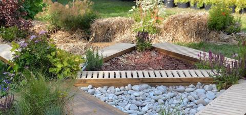 Что такое сенсорный сад и ка…
