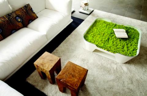 Живая мебель для гостинной