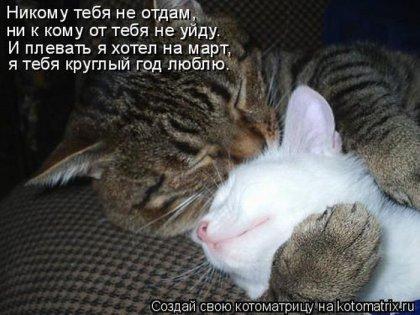 Дружба крепкая