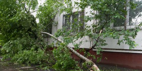 Квартира или дом повреждены ураганом. Что делать?