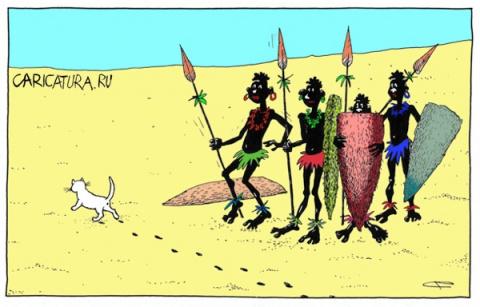 История про первый приезд в Африку