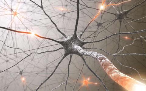 Как пропить свои мозги?