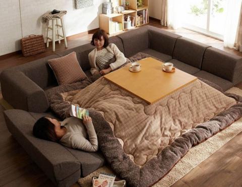Во многих Японских домах нет центрального отопления и вот как они спасаются зимой
