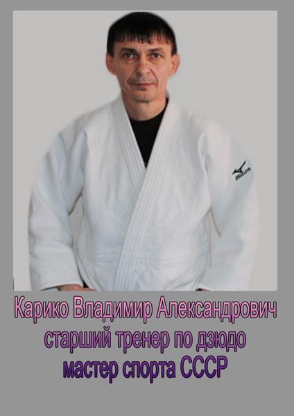 Владимир Карико