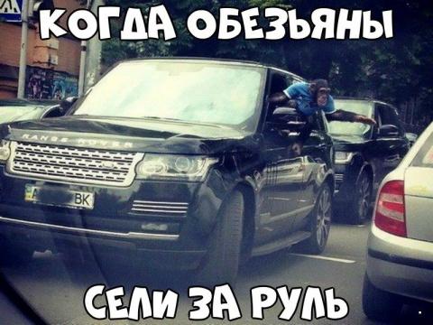 Автовсячина(30 фото)
