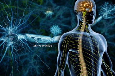 История болезни: 10 фактов о…