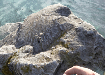 Анонсирована игра Hold Your Own о реалистичном выживании на острове с дикими животными