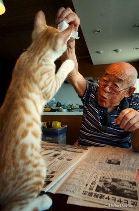 История про котенка, который вернул радость жизни сердитому старику