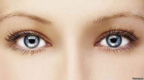 Эволюция. Почему глаза у нас…