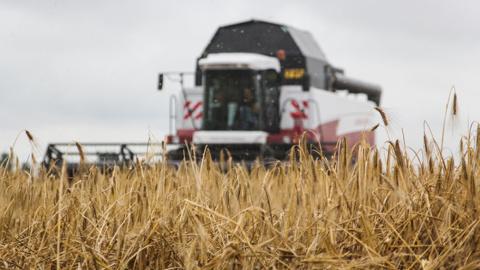Псковские фермеры могут полу…