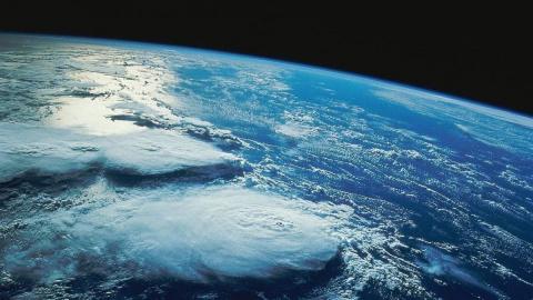 WWF: Человечество съедает планету