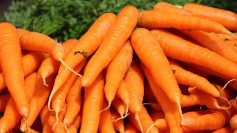 Как сохранить морковь на зиму