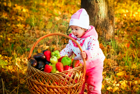 Андрей Туманов: как не испортить урожай удобрениями