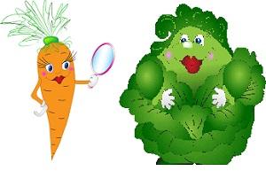 Овощи с модельной фигурой