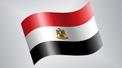Власти Египта заявили о сигн…