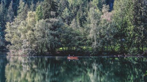 В американском искусственном озере Норман снова видели местную Несси