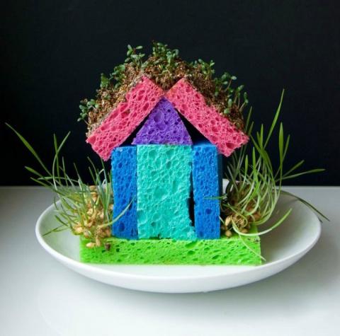 Детский огород в квартире - занимательные идеи