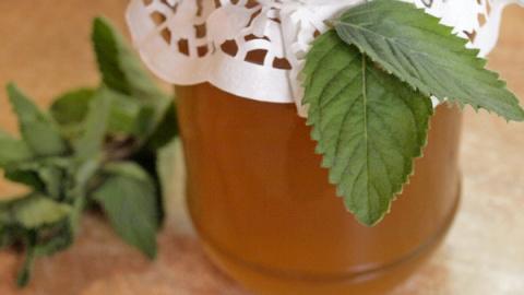 Мятный мёд - видео рецепт