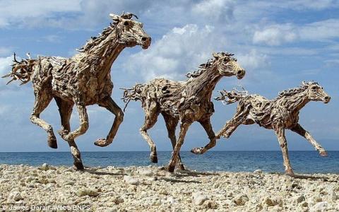 Лошади из коряг от Джеймса Дорана-Уэбба